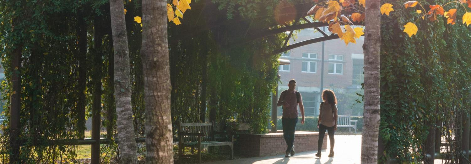 Students walk through green archway on campus