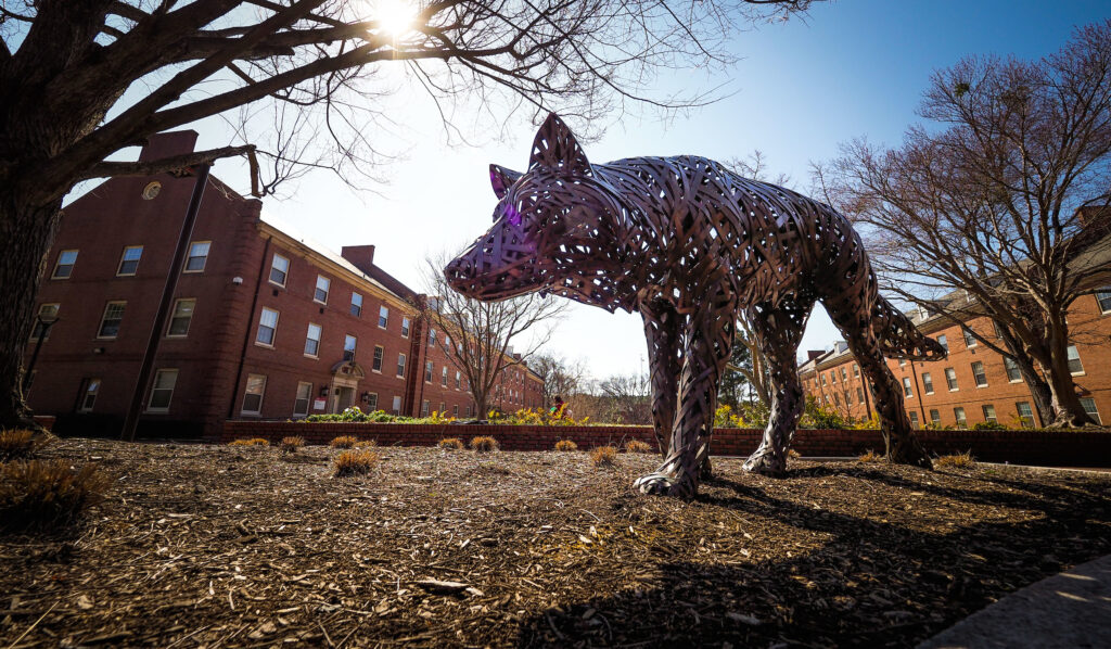 The copper wolves are on the prowl at Wolf Plaza near the Talley Student Union. Photo by Marc Hall